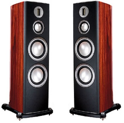Акустическая система Monitor Audio Platinum PL 300 Rosewood (Monitor Audio)
