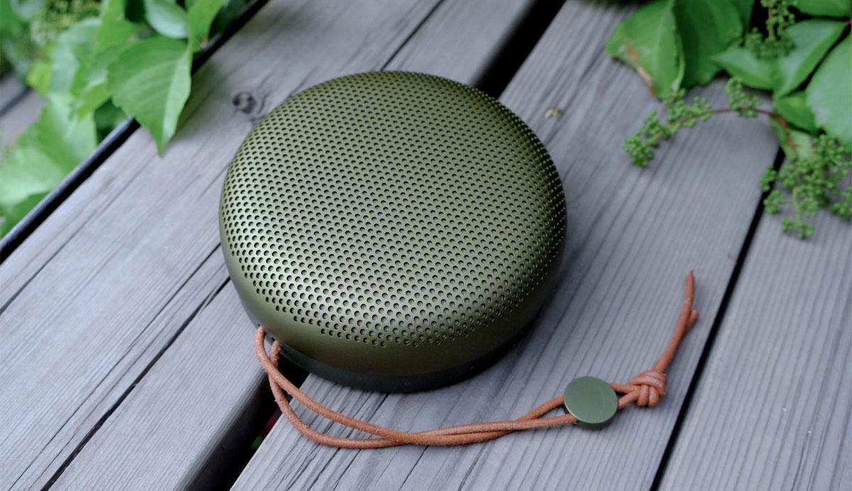 Картинки по запросу Bang & Olufsen BeoPlay A1 Moss Green